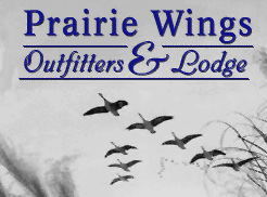 Hunt Spring Geese in Missouri with Prairie Wings Outfitters